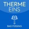Therme Eins logo